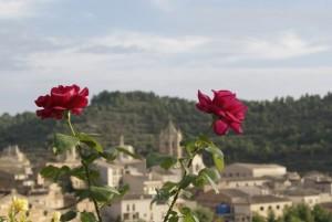 Entorno bello de Vallbona