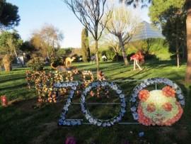 Zoo Aquarium de Madrid saluda a la primavera