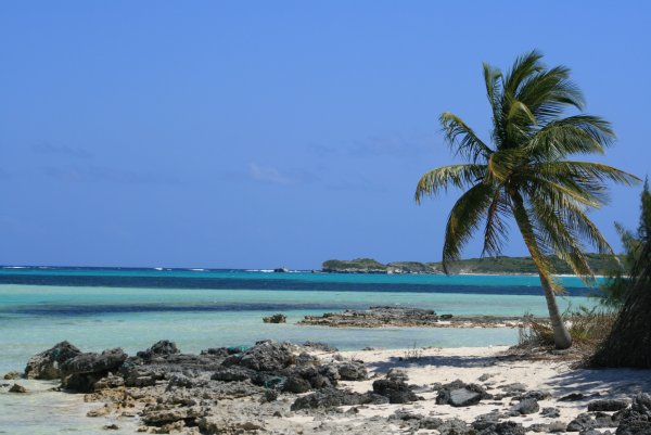 De buceo por San Salvador, en Bahamas
