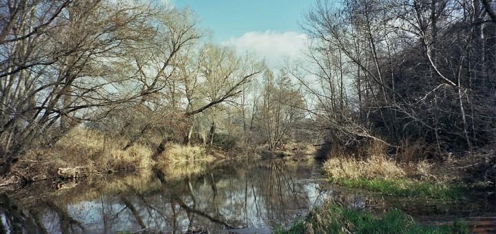 El río Jarama
