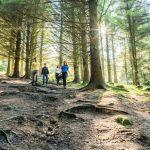 Conectar con la naturaleza en Irlanda