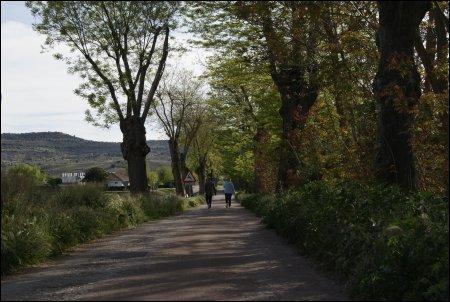 Espectaculares imágenes de la Vía Verde a su paso por Carabaña. Todo un descubrimiento