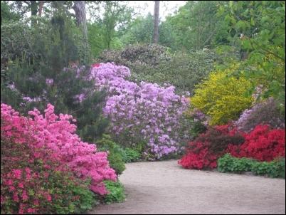 Las flores son las protagonistas en los parques de París