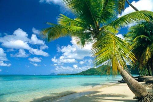 Martinica, crisol de colores en el Caribe