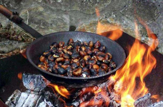Antes de que llegue el frío intenso, se celebra en los países mediterráneos la cosecha de castañas