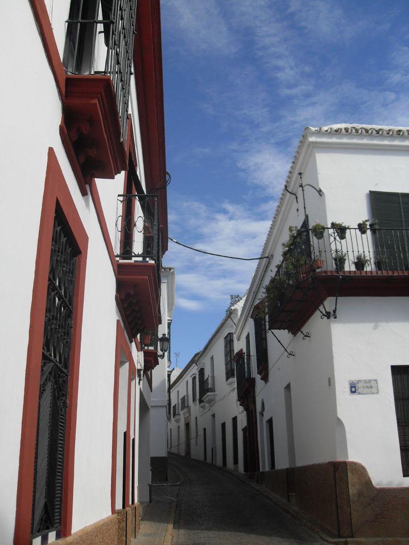La Carmona actual presenta con alguna ligera variación, el típico plano urbanístico romano