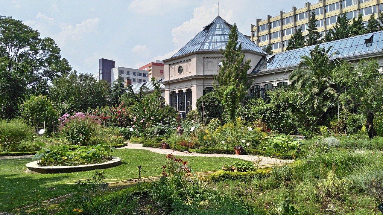 El Jardin des plantes / Cabinet (Notre-Dame / Quartier Latin) es especialmente interesante para los amantes de la botánic