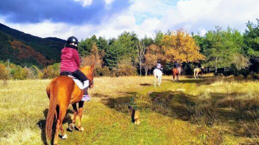 Otro modo de disfrutar de la naturaleza es adentrarse en ella a lomos de un caballo